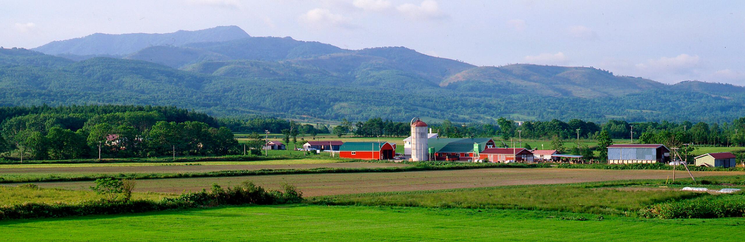 黒松内町の農村風景