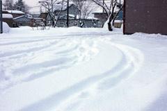 降雪.jpg